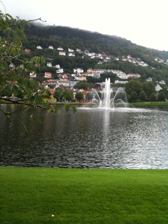 Central vattenpöl i Bergen, Norge.