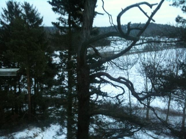 Snö på marken var det i januari 2012