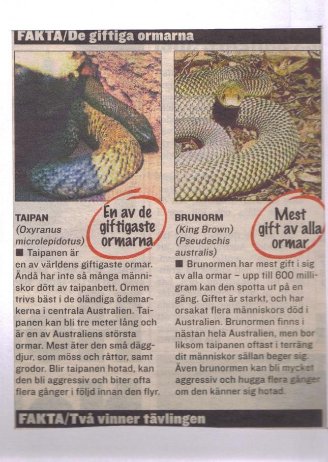 Farliga i Australien enligt Expressen 2002.