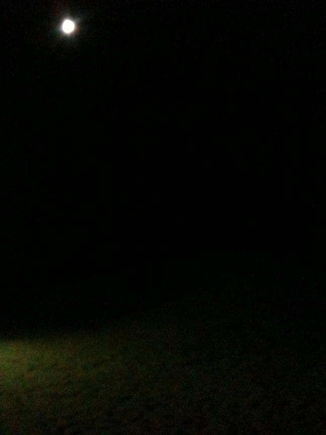 Fullmånen lyser i natt mörkret.