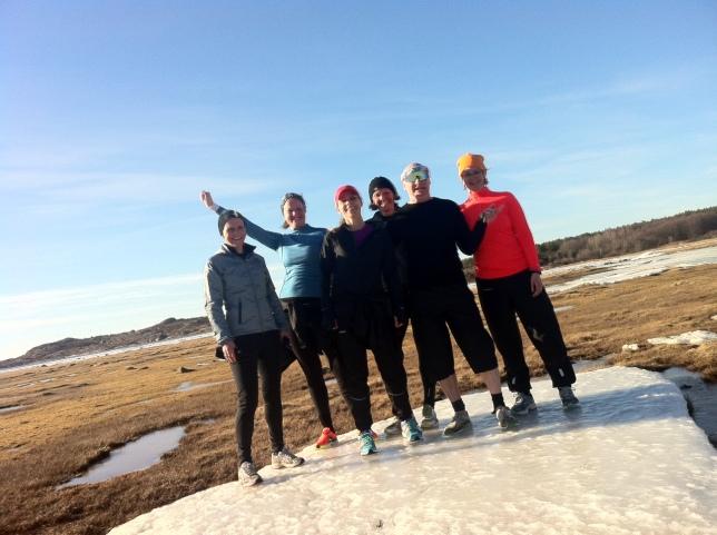 Löparkursen hittade ett isflak - på land!