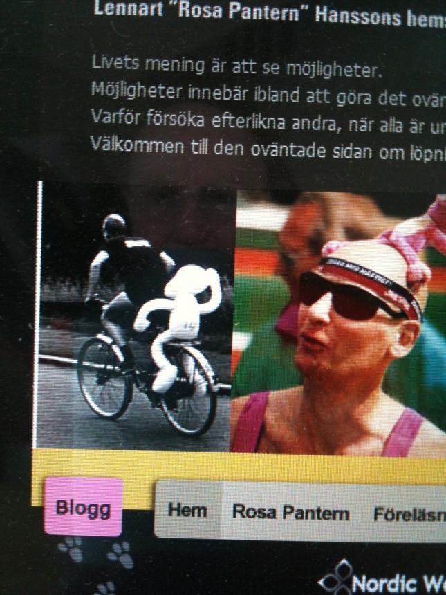 Del av min hemsida; rosapantern.com