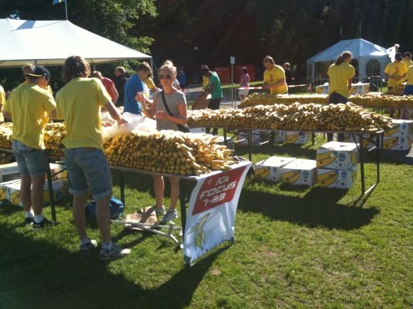 Blodomloppet, Göteborg, bananerna på plats.