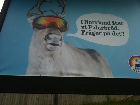 Ja se norrlänningar!