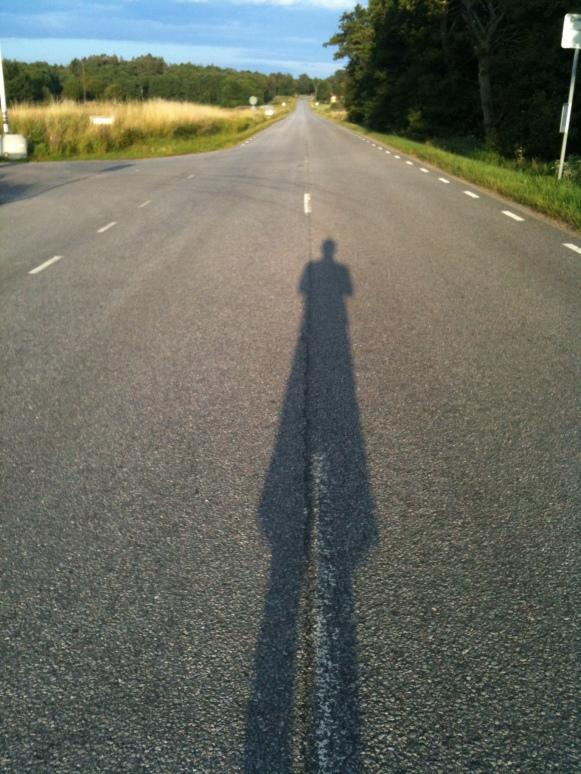 Snabbhet längs Lerkilsvägen!
