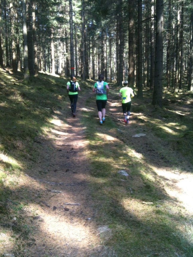 Vi kan springa 30 kilometer på Hallandsleden!