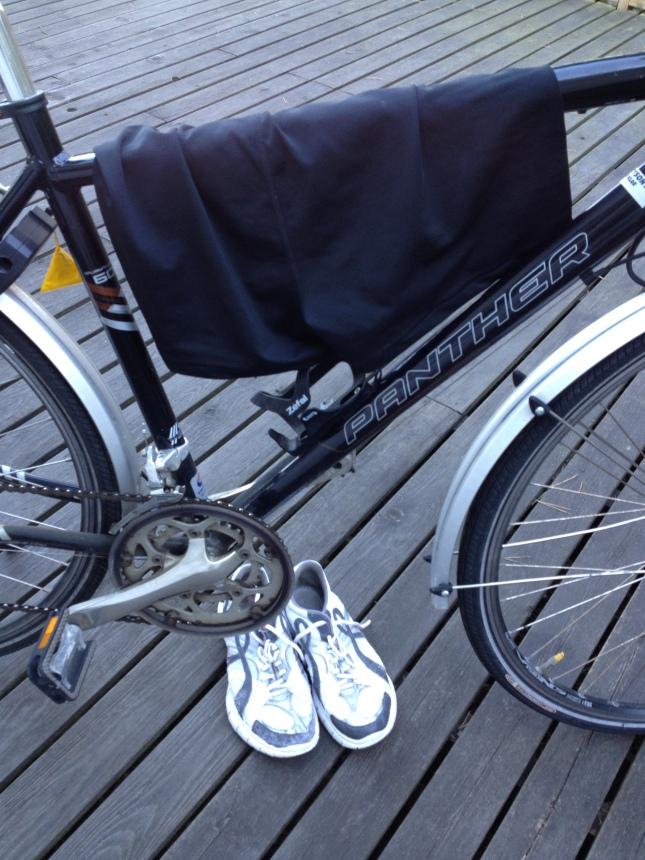 Vad som behövdes på Sveriges första triathlon!