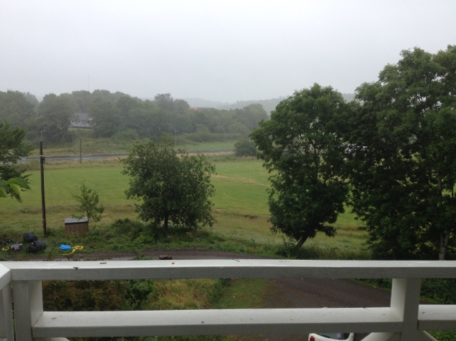 Det är alldeles för lätt och syrerikt att springa i regn!