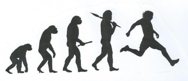 Evolutionsteori från nätet!