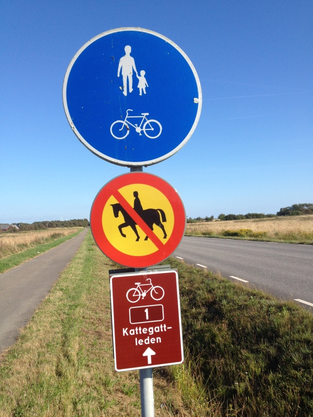 På ett ställe slapp man hästskit på cykelvägen!