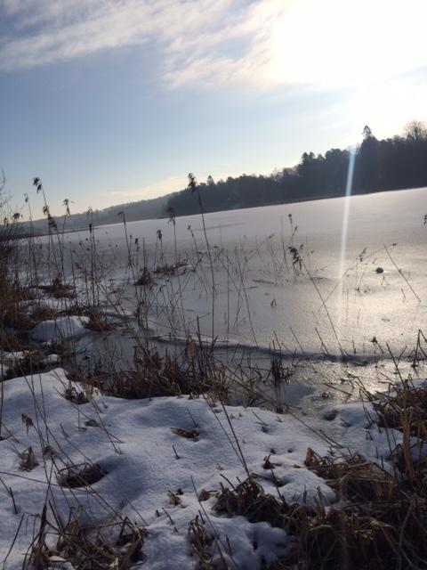 Rådasjön (S Svedberg)